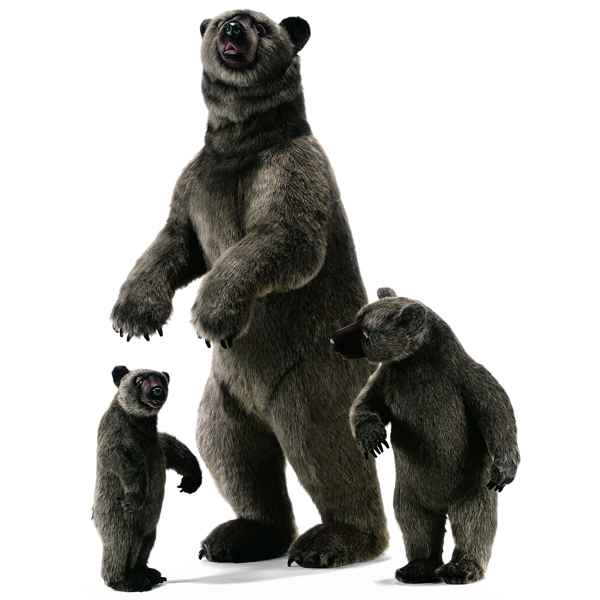 Anima - Peluche grizzly dress� 150 cm -3626