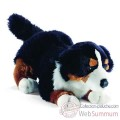 Video Anima - Peluche bouvier bernois 27 cm -1649