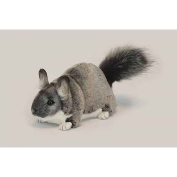 Chinchilla Anima -6294