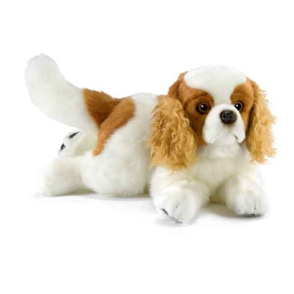 Video Peluche Cavalier King Charles Anima-1654