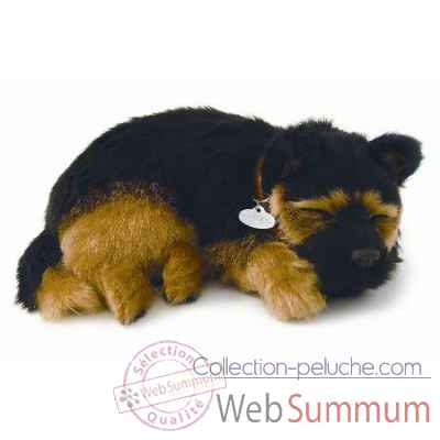 Berger allemand Perfect Petzzz -65407