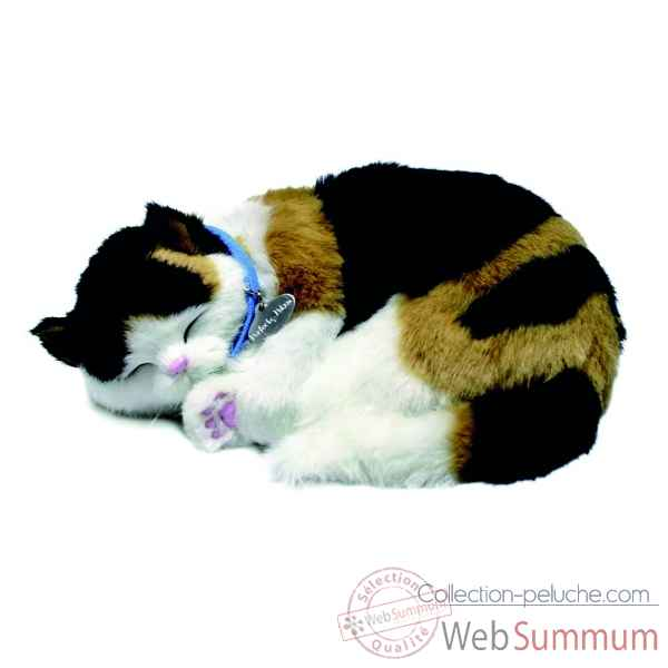 Chat calico Perfect Petzzz -65435