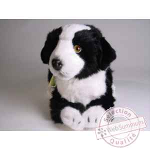Peluche allongee border collie 45 cm Piutre -1218