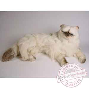Peluche allongee chat colour point ou himalaya 60 cm Piutre -2428