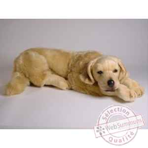 Peluche allongee golden retrievier 60 cm Piutre -2205