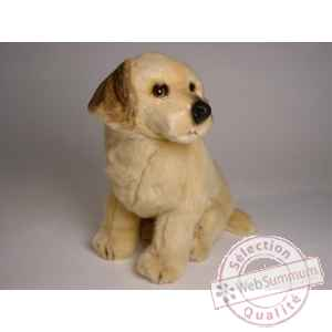 Peluche assise golden retriever 40 cm Piutre -2204