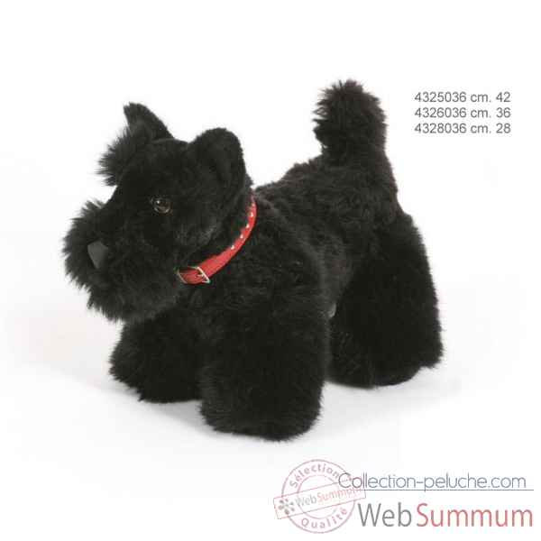 Scottish terrier 42 cm Ramat -4325036